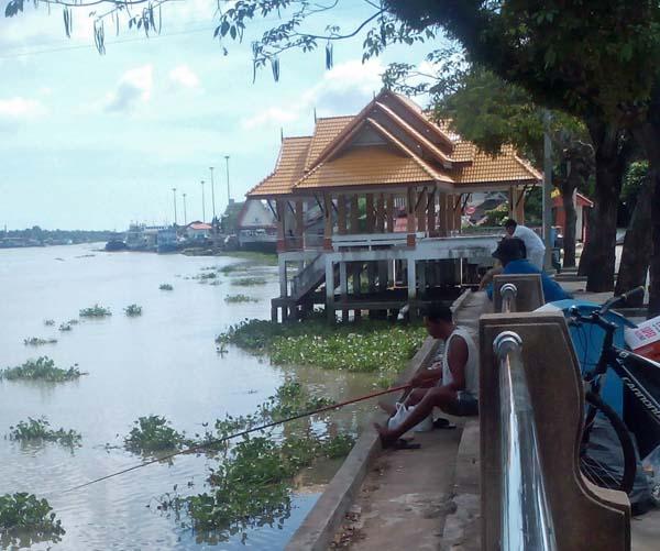 Río Tapi. Surat Thani.Tailandia.
