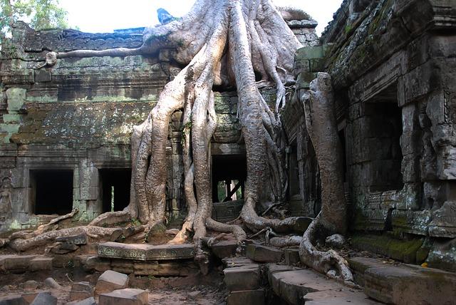 Ta Prhom. Angkor.